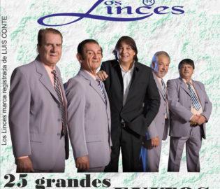 Contratar Los Linces (011-4740-4843) O Al (011-2055-4218) Contrataciones Christian Manzanelli