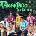 Contratar Tamarindo (011-4740-4843) O Al (011-2055-4218) Contrataciones Christian Manzanelli